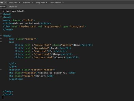 W25: Coding basics