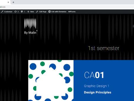 W29: Create a WordPress theme