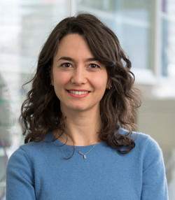 Giovanna Brancati, PhD