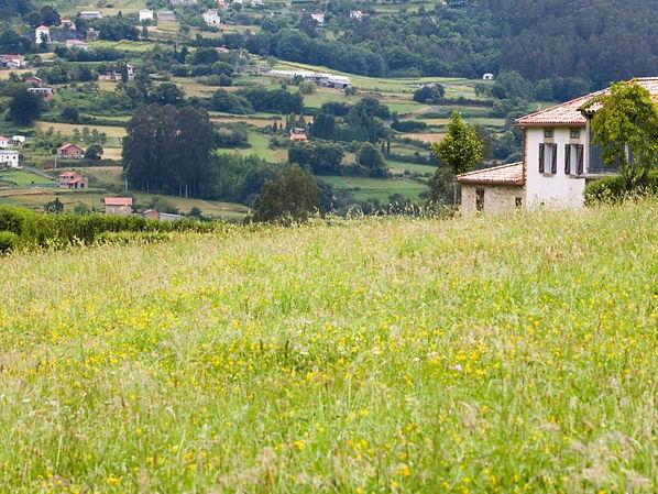 Agriturismo-Urbino-Agriturismo-SantAnton