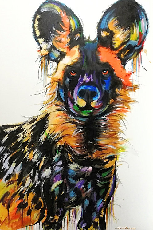 PAINTED DOG 18
