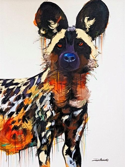 PAINTED DOG 3