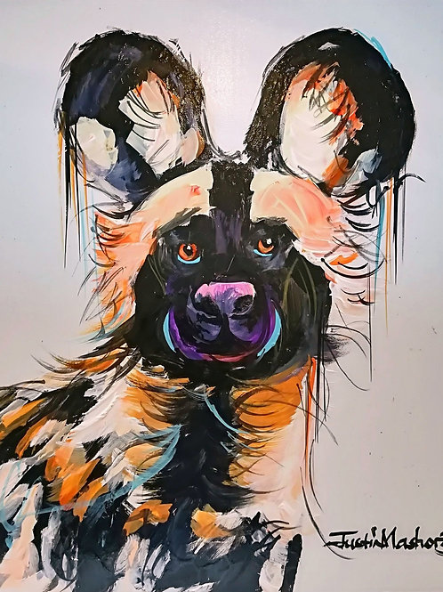 PAINTED DOG 6