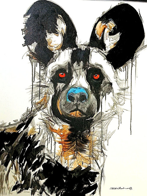 PAINTED DOG17