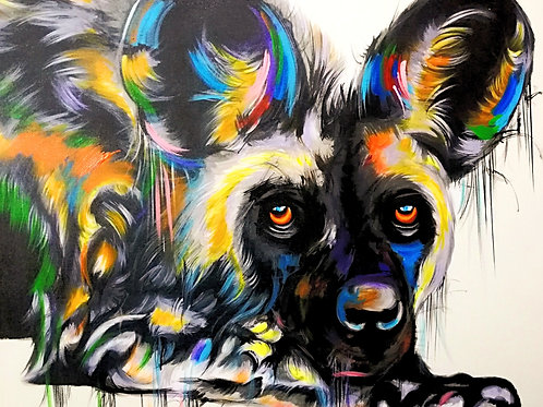 PAINTED DOG 19