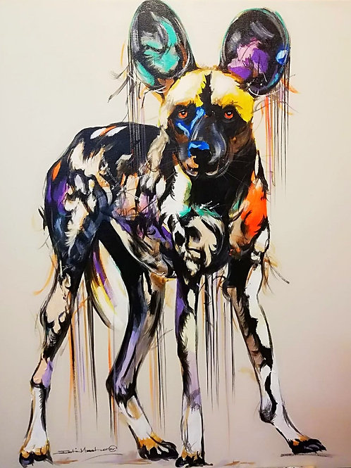 PAINTED DOG 12