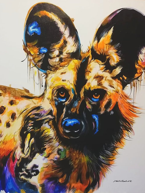 PAINTED DOG 16