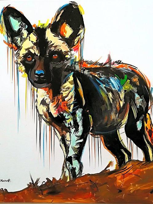 PAINTED DOG 7