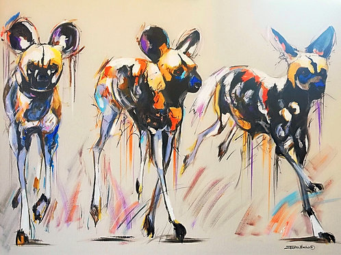 PAINTED DOG 9