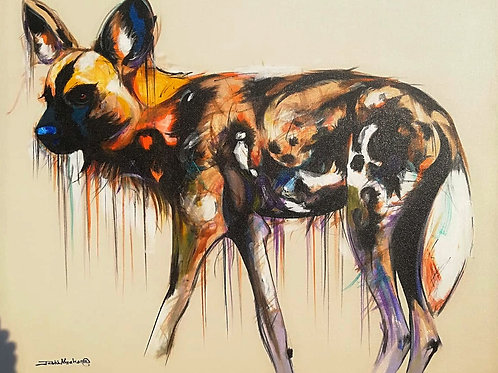 PAINTED DOG 14