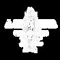 Logo CVX White.png