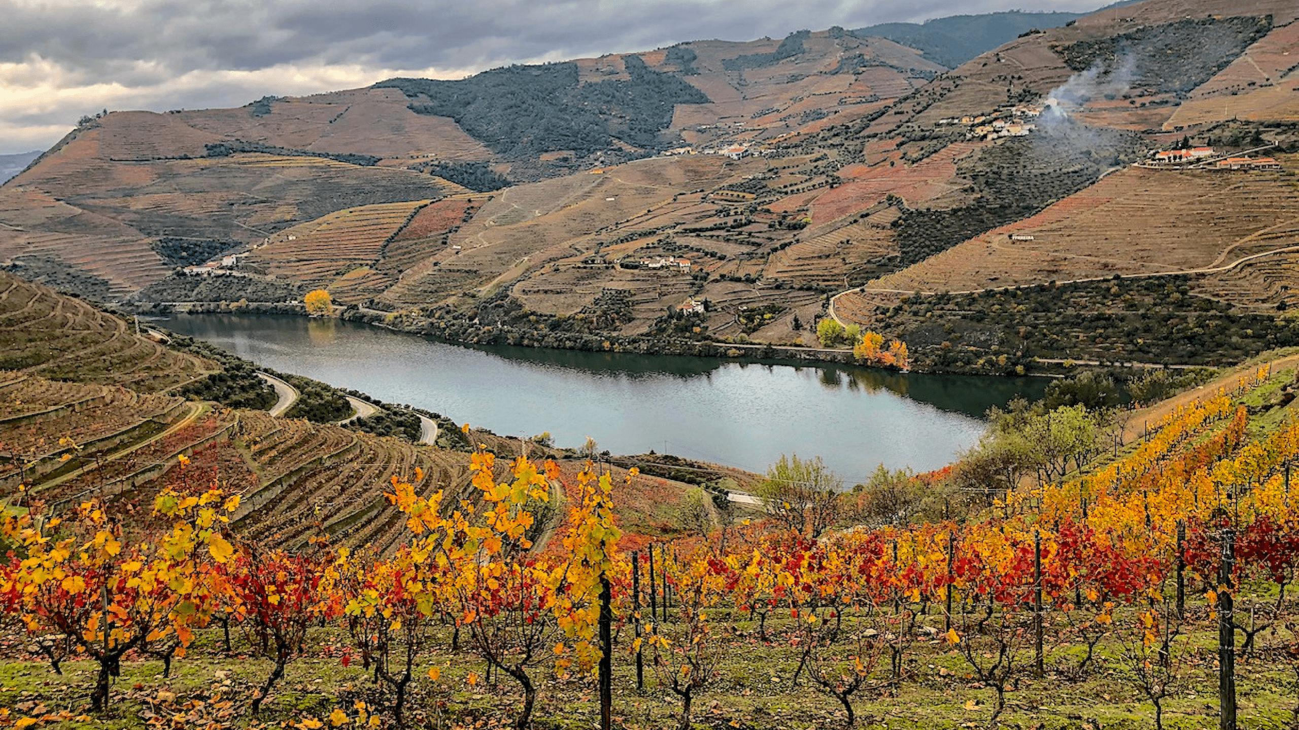 Vale-do-Douro