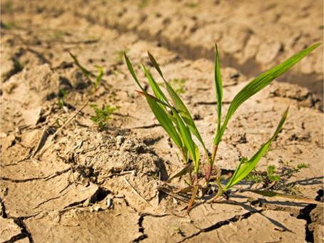 Tarifas no período de seca!