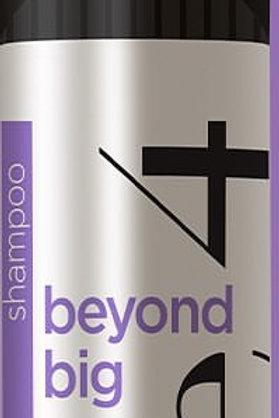 Fave 4 Beyond Big Shampoo 8.45 oz
