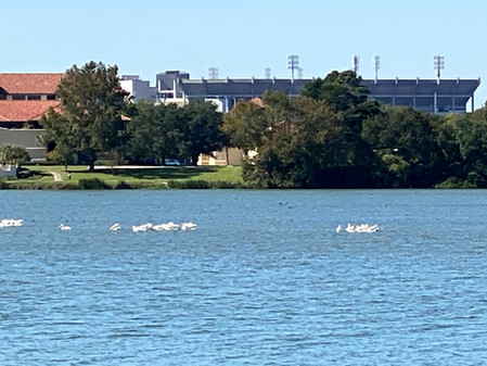 Proposals Received for University Lakes Project