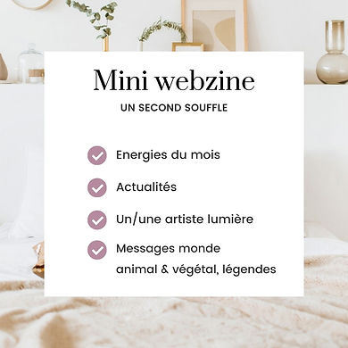 Nouveau Format Mini webzine.jpg
