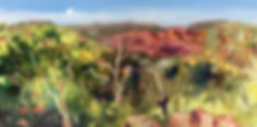 32 approach road ariel's view web.jpg