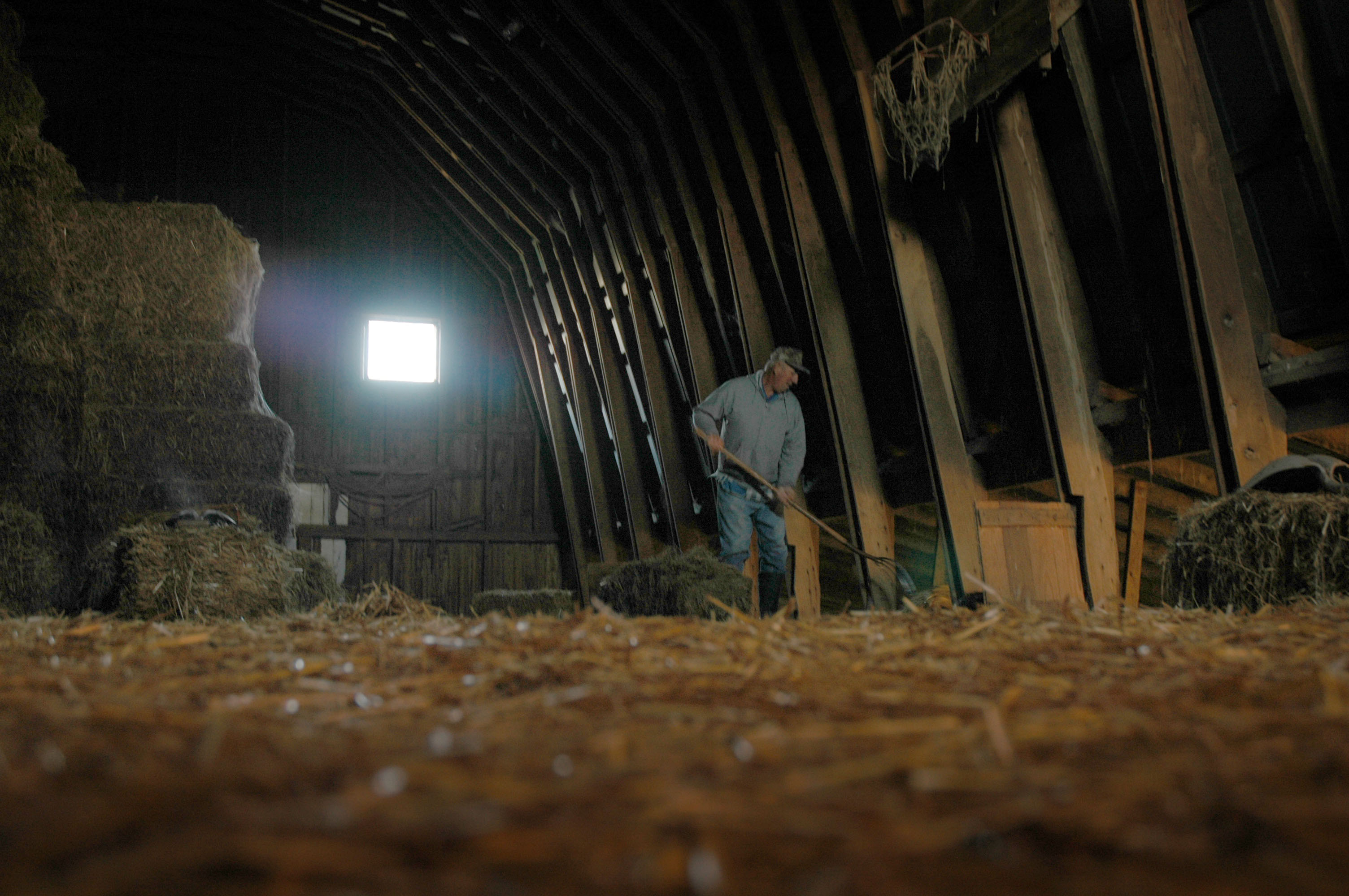 Roy In Barn