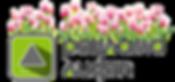 Лого-Цвет.png