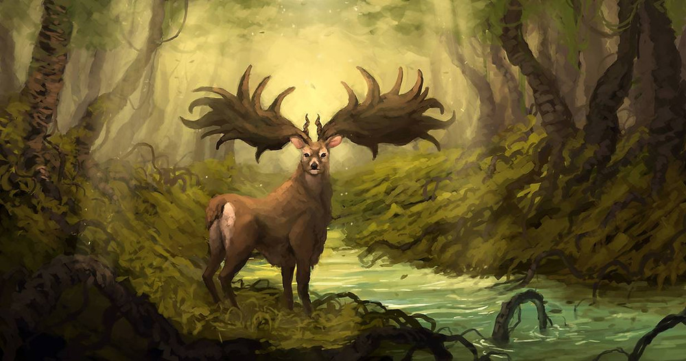 Deep Forest by xlxbetoxlx