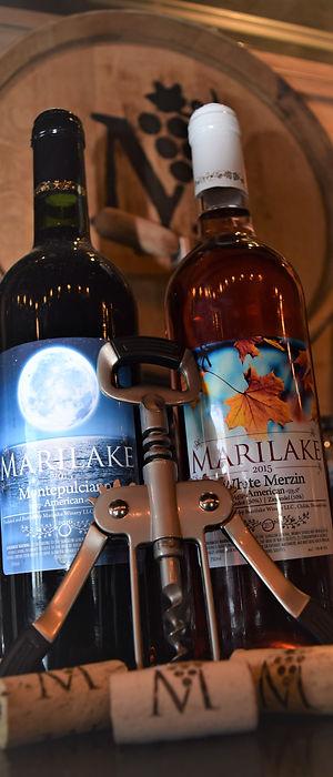 bottles and corks.jpg
