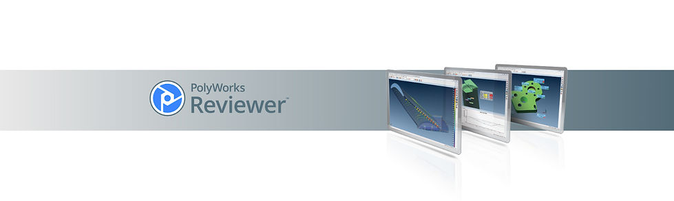 PolyWorksReview_header.jpg