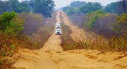 Botswana - Savute