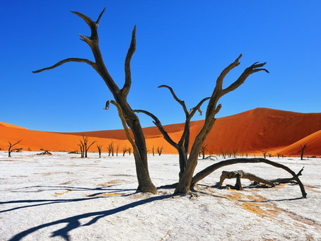Sossusvlei, la carte postale de la Namibie !