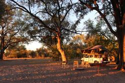 Botswana - Réserve de Moremi