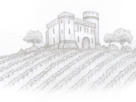 Rocca Dei Sanniti Vineyard + Wine Feature