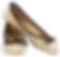 Shoes 12.png