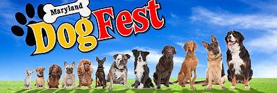 Dog Fest.jpg