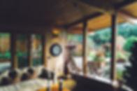 Home with garden.jpg