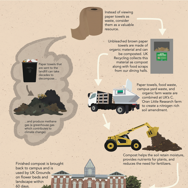 UK Recycling: Life Cycle of a Paper Towel