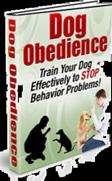 dog-obedience-plr-ebook-cover_edited_edi