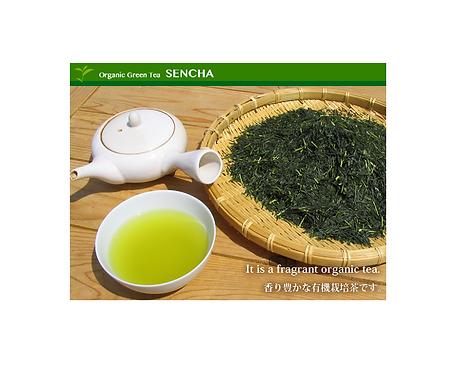 Organic Sencha green tea Bio Hamasa 100g浜佐有機煎茶