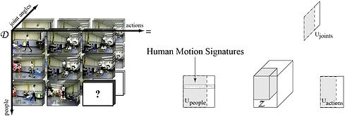 human_motion_signature-03-01.png