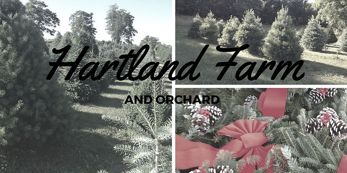 Hartland Farm and Orchard