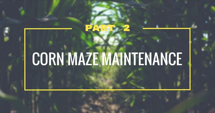 Corn Maze Maintenance - Part 2