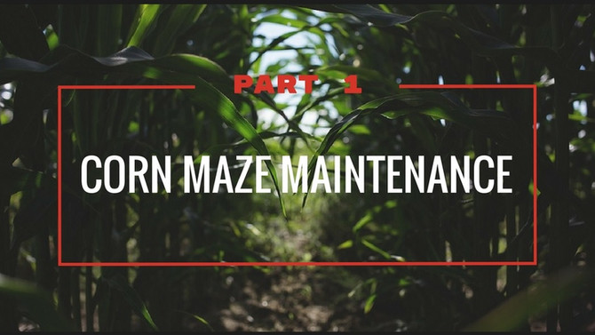 Corn Maze Maintenance - Part 1