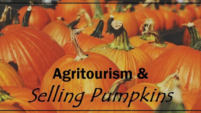 Agritourism & Selling Pumpkins