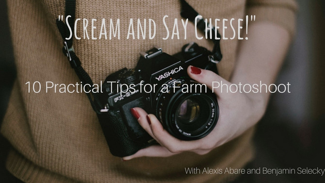 """""""Scream and Say Cheese!"""" 10 Practical Tips for a Farm Photoshoot"""