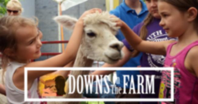 Downs On the Farm