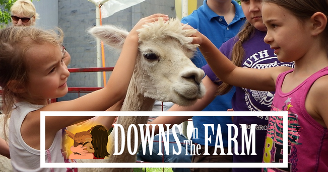 Downs On the Farm