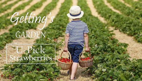 Getting's Gardens