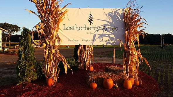 Leatherberry Acres