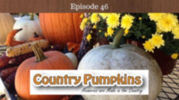 Country Pumpkins Kentucky