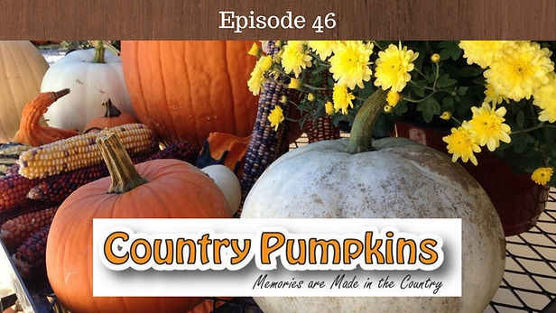 Country Pumpkins Kentucky
