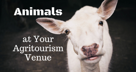 Animals at Your Agritourism Venue