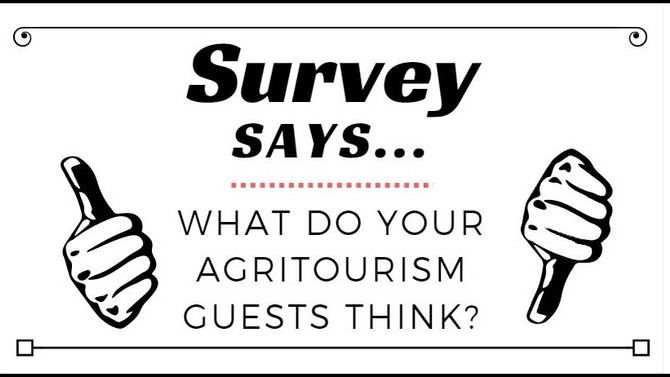 Survey Says...What Do Your Guests Think?